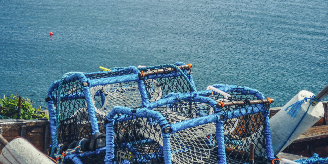 Fishing nets by the coast